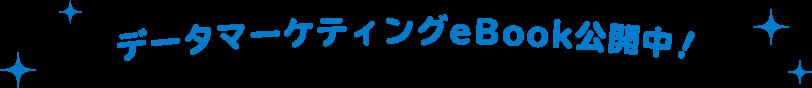 データマーケティングeBook公開中!